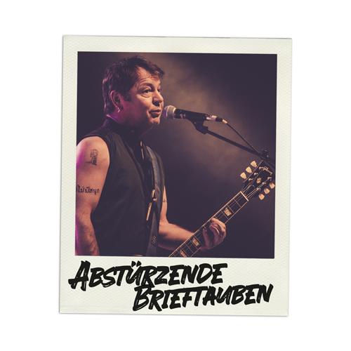 Konzertfoto Abstürzende Brieftauben live in Kiel - Fabian Lippke Konzertfotograf Kiel