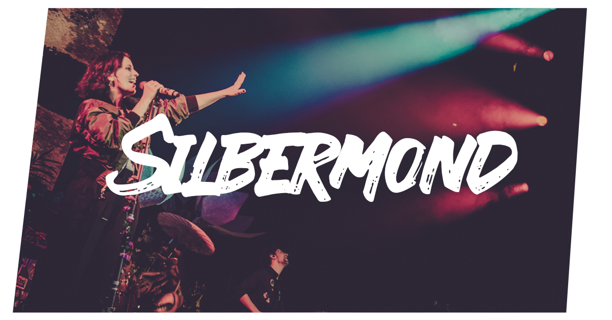 Read more about the article Silbermond live in Hamburg